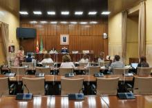 Comparecencia de APIA en la sede del Parlamento Andaluz.